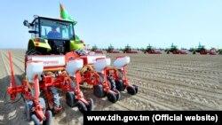 Türkmenistanda ekin ekýän traktor. Illýustrasiýa suraty.