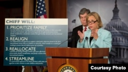 Мэри Лэндре представляет свой законопроект в поддержку усыновлений