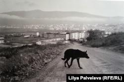 Магадан. Фото Э. Гатауллина