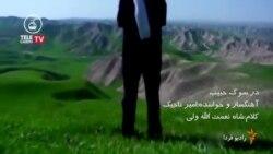 در سوگ حبیب ترانه ای از امیر تاجیک برای مرد تنهای شب