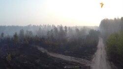 Наслідки масштабної пожежі в лісі у Деснянському районі Києва (відео з безпілотника)