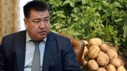 Қирғизистон картошкаси қимматлик қилди - бозор Покистонникини танлади