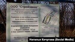 Место вырубки леса возле Института Геологии во Владивостоке