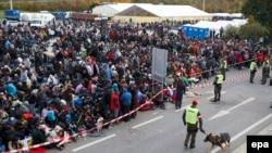 Австрия-Словения шекарасында тұрған жүздеген мигрант. 22 қазан 2015 жыл.