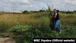 Украина -- полици кIомал хIаллакьеш ю Киеверчу кIоштахь