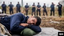 Сербия менен Венгриянын чек арасында уктап жаткан мигрант