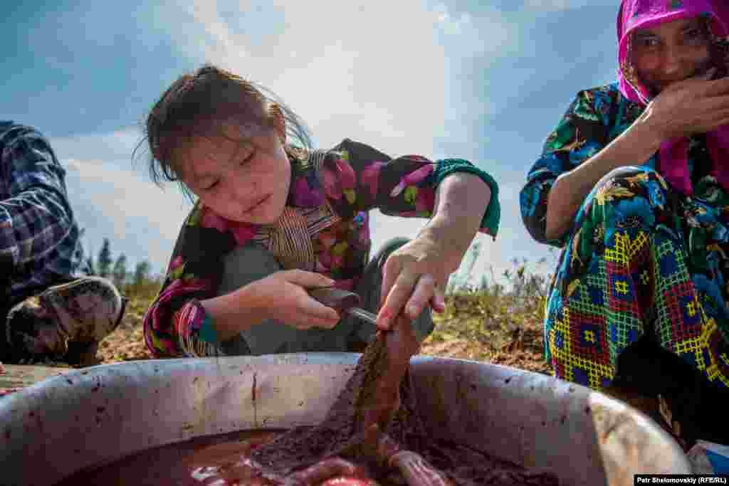 Sveta, 9, cuts a piece of reindeer meat.