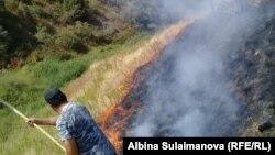 Пожар на пастбище в Алмалуу.
