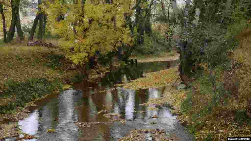 На річці Бельбек утворилися острівці з опалого листя