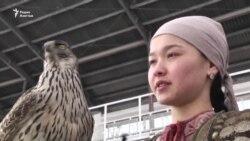 Ловчие птицы на состязаниях в Алматы