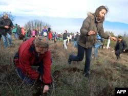Fákat ültetnek az emberek Szkopje közelében, 2010. november 19-én. Az akkor még Macedóniának nevezett mai Észak-Macedónia lakosai hét millió fa telepítését célozták meg, hogy elősegítsék erdőik megerősödését. 2008 óta több mint 20 millió fát telepítettek az évente kétszer megtartott ültetések során