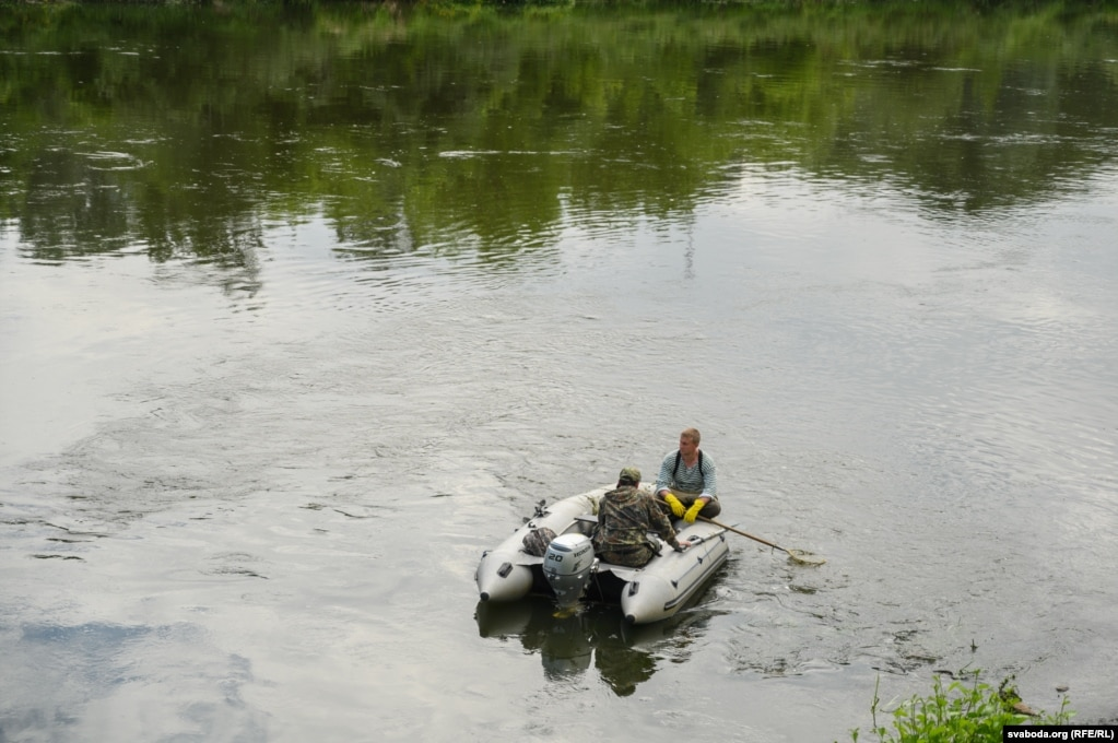 Катер рыбоохрана собирает мертвых рыбу на Немане в центре Гродно