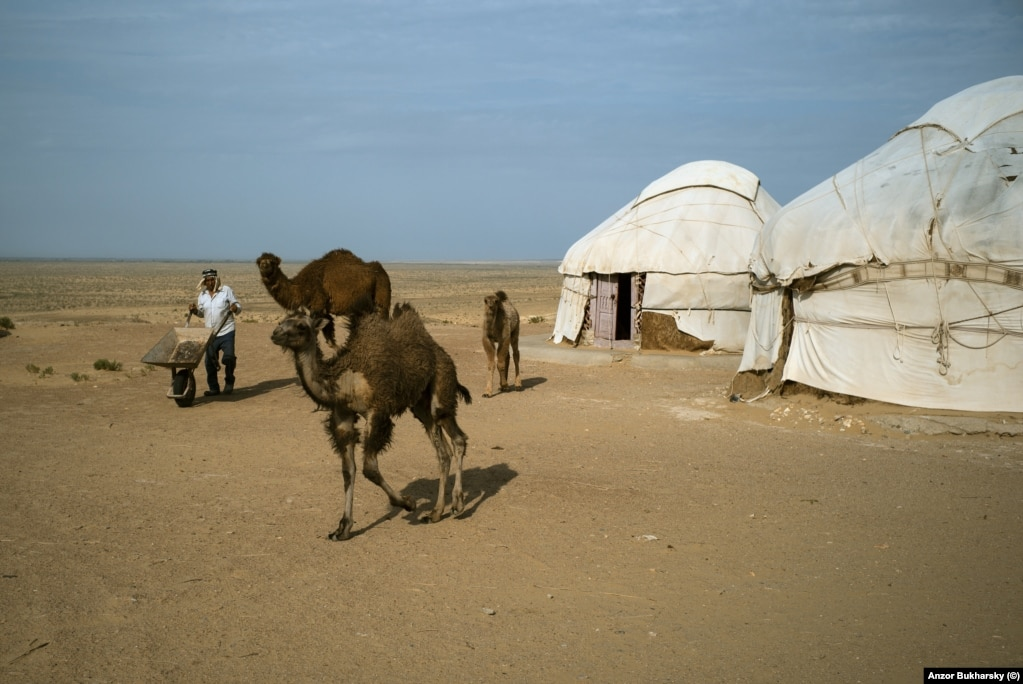 Yurts at a roadside stop in the empty expanse of the Karakalpakstan desert. The roadside attraction is run by camel breeders.