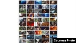 """ტერენს მალიკის """"სიცოცხლის ხის"""" პოსტერი"""