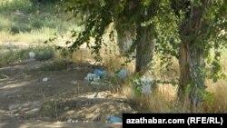 Активисты проекта надеются на то, что за время работы им удастся найти в Абхазии единомышленников – людей, готовых ради сохранения чистоты природы отказаться от использования пластика