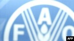 Лого Продовольственной и сельскохозяйственной организации ООН