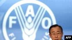 """أمين عام الأمم المتحدة بان كي مون يتحدث في مؤتمر لمنظمة الـ""""فاو"""" في 3 حزيران 2008 بروما"""