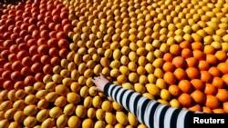 В 2014 году доля импорта в общем потреблении в России семечковых и косточковых фруктов превышала 60%.