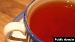 Это была традиционная оппозиционная беседа на кухне за чашкой чая с Цисаной