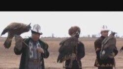 Салбурун: Кыргыз тайганы, Америка жаасы...
