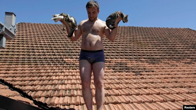 A  man rescues cats from a roof during heavy floods in Vojskova, Bosnia-Herzegovina, on May 19.