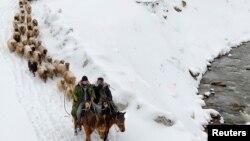 Этнические казахи в Синьцзяне перегоняют скот. 12 марта 2015 года.