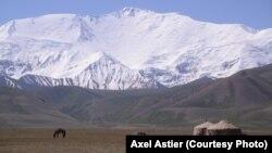 Пастбище в Алайском районе Ошской области Кыргызстана.