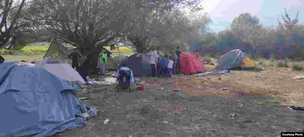 Oko 300 migranata trenutno živi na livadi u naselju Polje pored Velike Kladuše, na zapadu BiH. Među njima su djeca i žene.