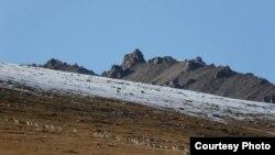 Сарычат-Эрташский заповедник. Иссык-Кульская область.