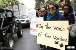 Animal rights activists in Shiraz protest against the culling of dogs in 2015.