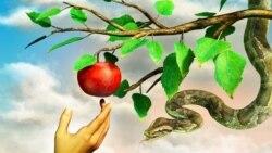 گناه یا امر غیراخلاقی؛ کدام مهم است؟