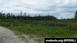 На месцы лесу — кучы гальля