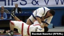 «Түйе палуан» атағы үшін ақтық жекпе-жекте Семейден қатысқан Айбек Нұғымаров түркиялық бақталасынан күш асырды. Астана, 23 қазан 2010 жыл.