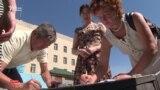 Алматылықтар биліктен қамаудағы белсендіні босатуды сұрады