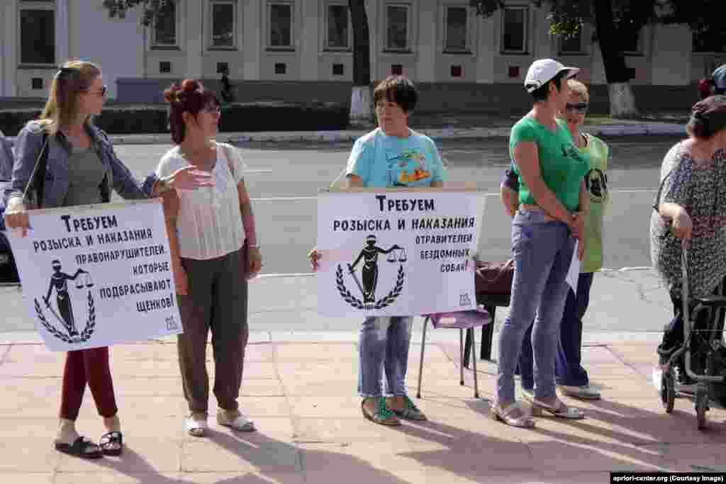 """""""Cerem identificarea și pedepsirea celor care omoară animalele fără stăpân"""". Pichet în susținerea drepturilor animalelor la Tiraspol, în fața Sovietului suprem."""