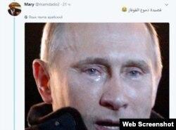 Арабы тоже захотели присоединиться к стихотворной кампании, посвященной Путину
