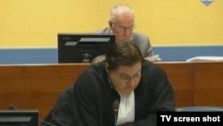 Ratko Mladić i branitelj Dejan Ivetić u sudnici 27. lipnja 2013.