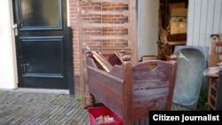 Голланди -- шира ага