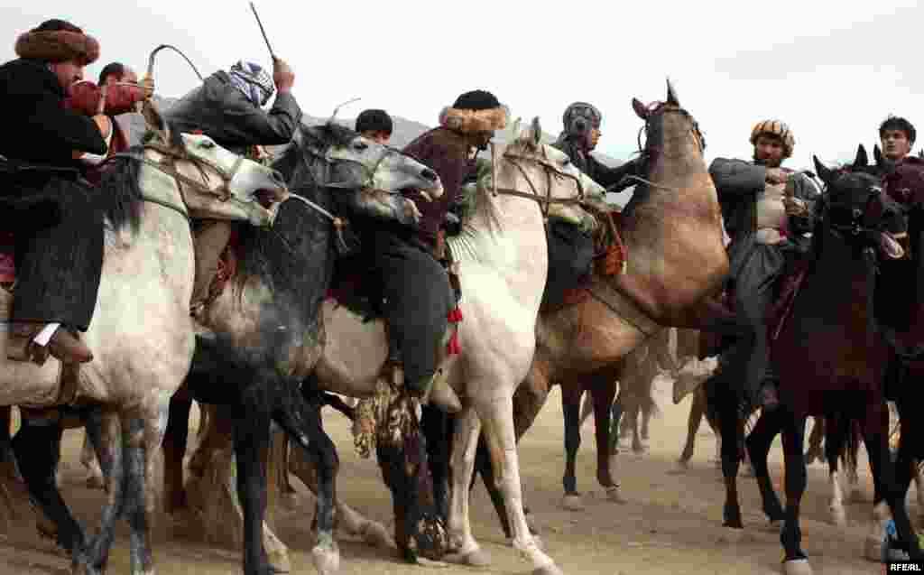 در شمال افغانستان حداقل تا زمان قبل از حمله شوروی، تا چند صد سوارکار میتوانستند همزمان با هم در یک نوع خاص بزکشی که در زبان دری به تودهبرآیی معروف است، به رقابت بپردازند.