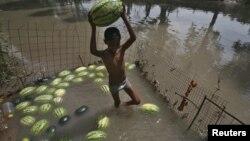 Мальчик пытается сохранить арбузы в воде. 28 мая 2015 г., штат Джамму, Индия