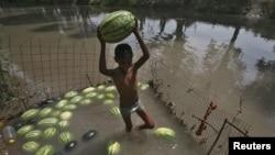 Мальчик пытается сохранить арбузы в воде. Штат Джамму, Индия, 28 мая 2015 года.