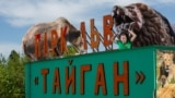 """""""Taygan"""" safari parkı"""