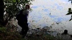 В Сибири люди сами очистили озеро, после многолетних обещаний властей