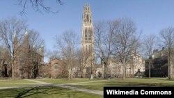 Йельский университет.