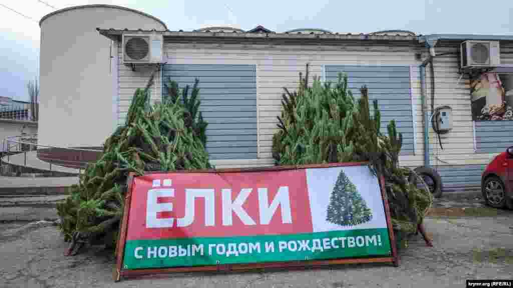 Елочный базар в Керчи. В этом году в городе точки продажи деревьев открыли возле центрального рынка, а также на улицах Ворошилова, Орджоникидзе и Войкова
