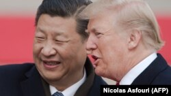 Xi Jinping i Donald Trump, fotoarhiv