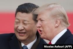 Лидеры Китая и США Си Цзиньпин и Дональд Трамп во время визита американского президента в Пекин, ноябрь 2017 года.