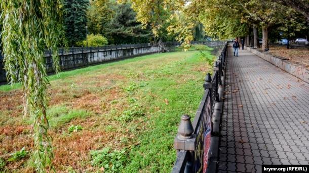 Болото вместо реки: Салгир активно зарастает зеленью [Фото] фото