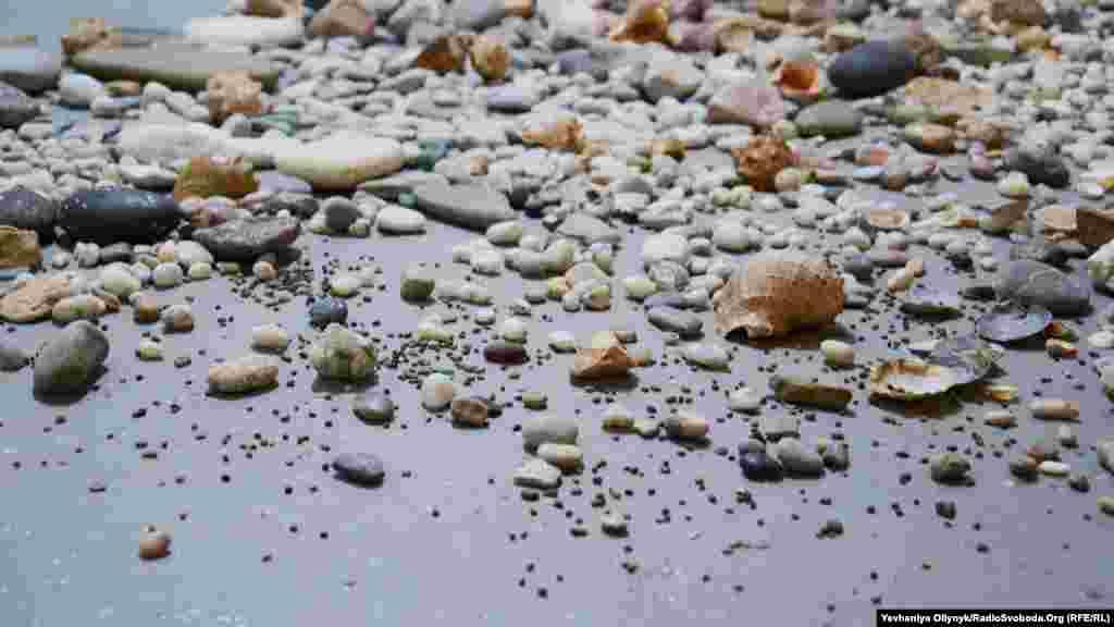 Лія Достлєва, Юлія Полуніна-Бут, «Каміння з Криму». Каміння для інсталяції авторки збирали через оголошення й соцмережі.