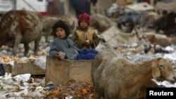 په پاکستان و افغانستان کې د غربت کچ ډېر لوړ دی